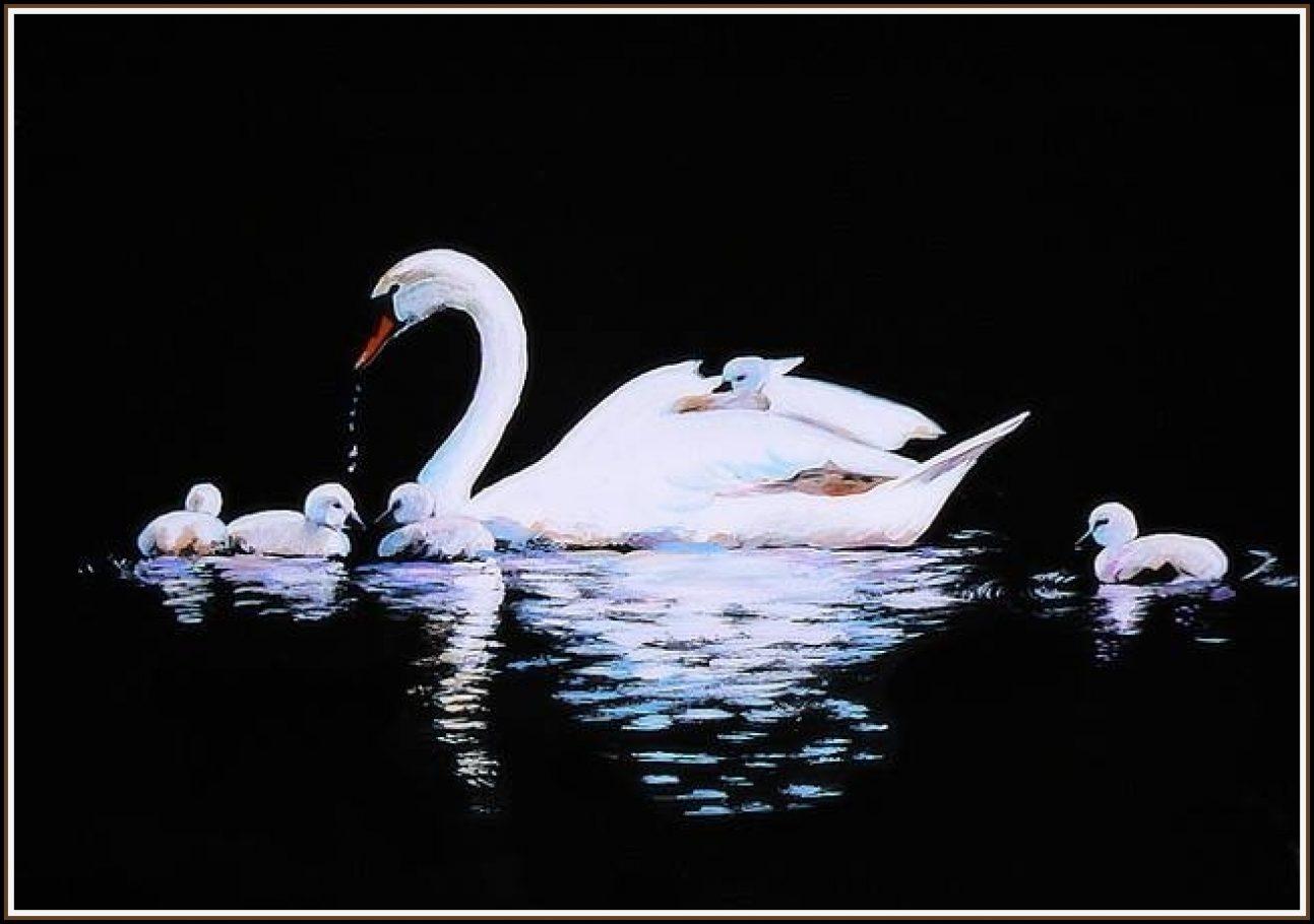 Labutia rodinka A3, akryl