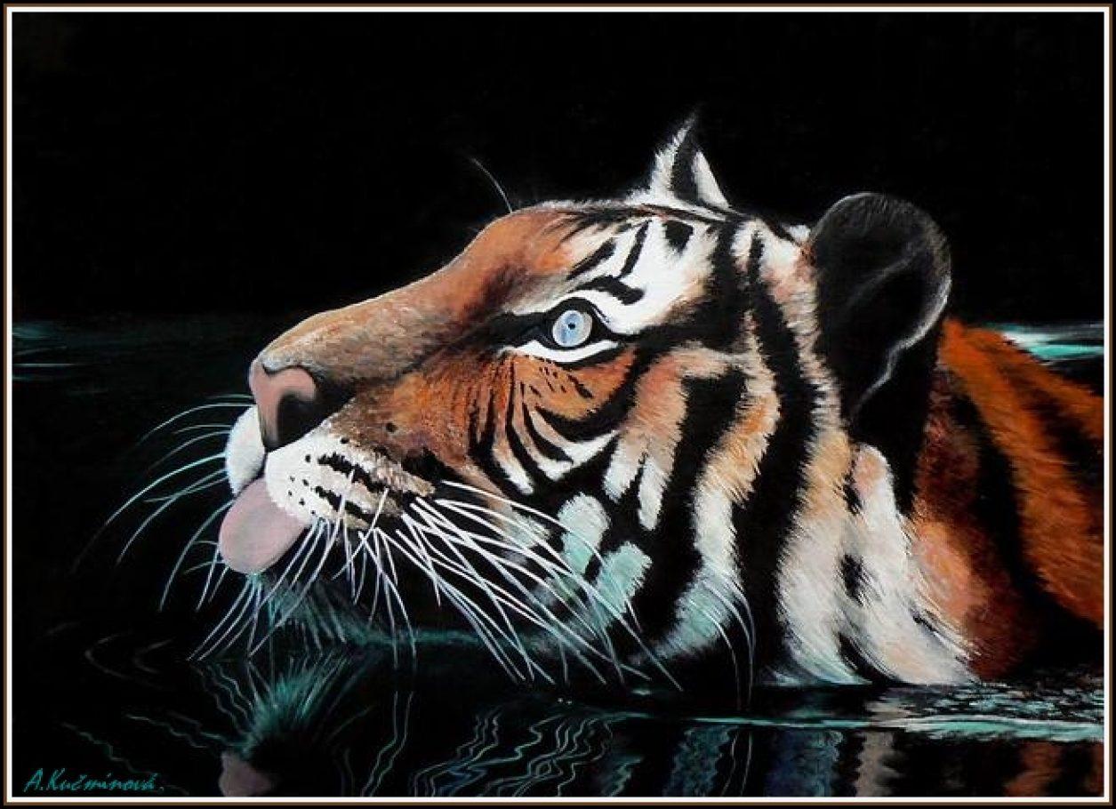 Plávajúci tiger 50x70, olej